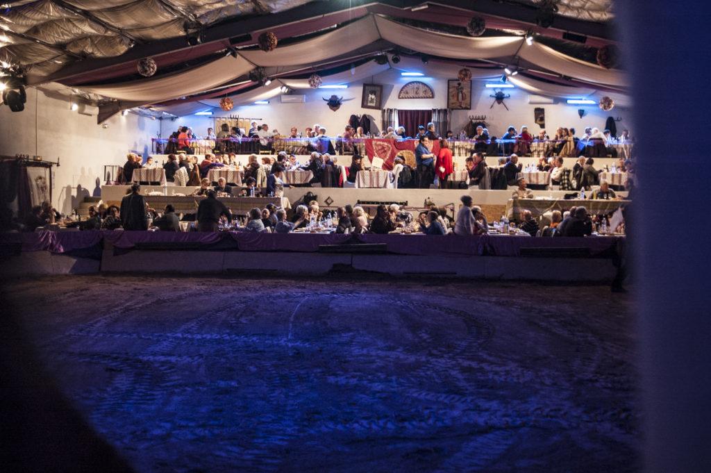 Les Cabarets équestres de Camargue. images haute résolution pour Presse. Merci de respecter les droits d'auteur en mentionnant les cabarets équestres et en notant l'adresse www.cabarets-equestres.fr près de l'images